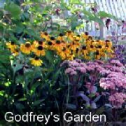 Client Stories & Testimonials - Godfrey's Story